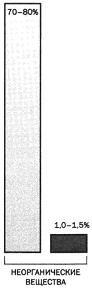Тест по биологии Химический состав клетки 1 вариант 9 задание диаграмма