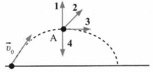 Тест по физике Импульс тела 3 задание