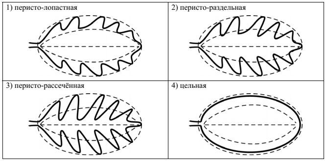 Образец ВПР 2018 по биологии 5 класс 3_2