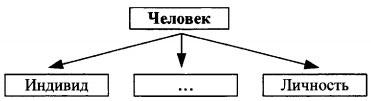 Схема Человек