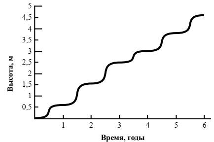 График рост древесного растения умеренного климата